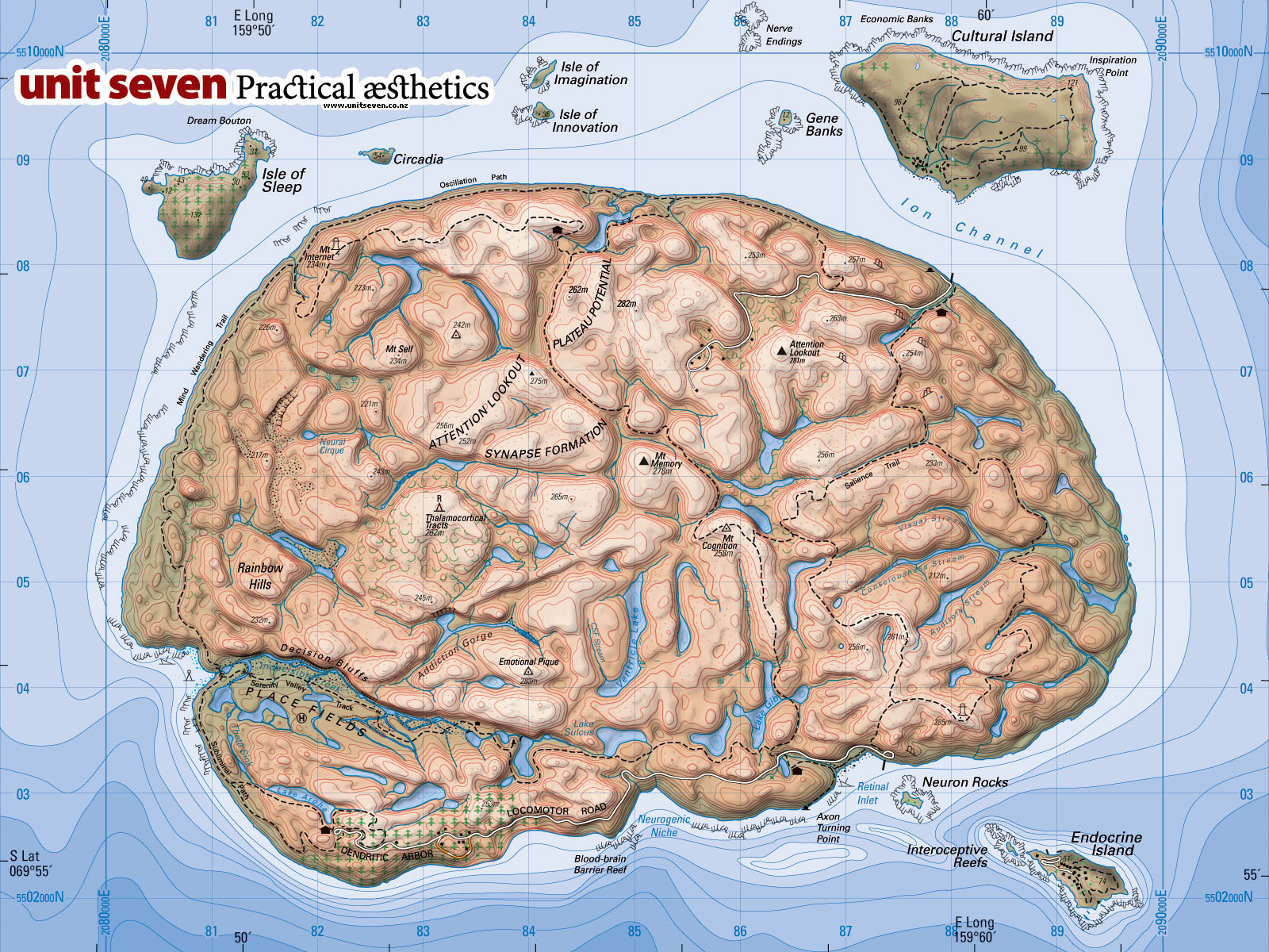 Topography Of Diversity All Kinds Of Minds