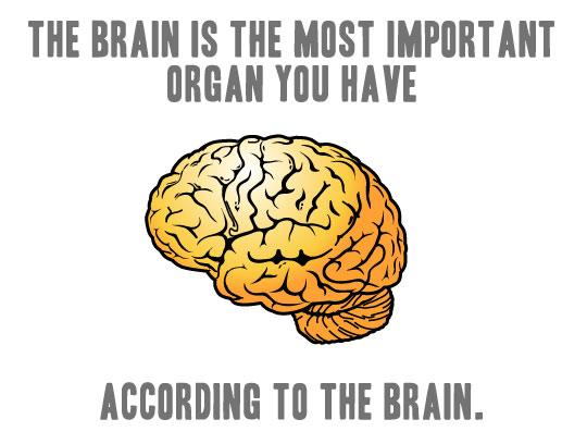 funny-troll-brain-meme